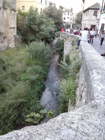 Vista del Río Darro. Albaicín. Granada. Foto: francisco López