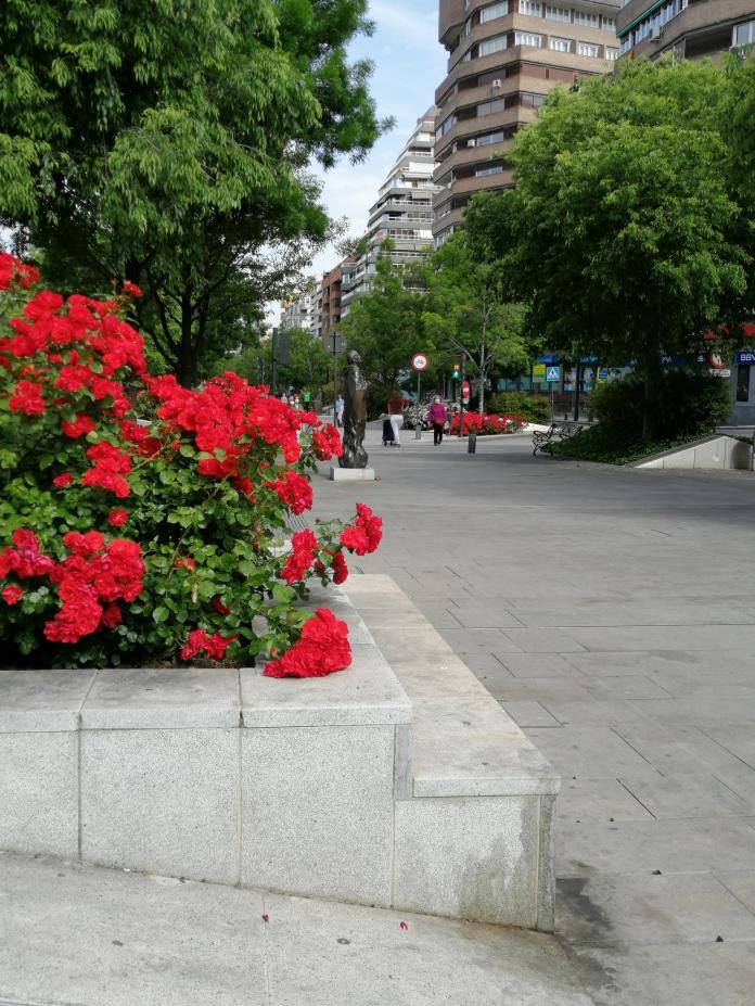 Avenida de la Constitución. Granada. Foto: Francisco López